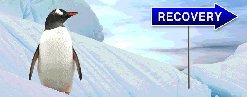 google penguin recovery